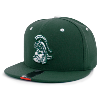 Nike Men's Michigan State University Spartans Green Players True Retro Snapback Cap