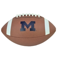 Nike Michigan Wolverines Vapor 24/7 College Edition Football