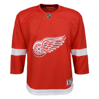 Detroit Red Wings Youth Red Replica Jersey