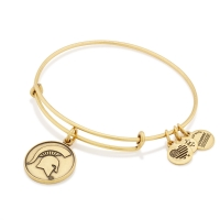 Alex and Ani Michigan State Spartans Rafaelian Gold Team Logo Slider Charm Bangle