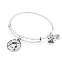Alex and Ani Michigan State Spartans Rafaelian Silver Team Logo Slider Charm Bangle