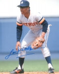 Detroit Tiger Lou Whitaker 8X10 Autographed Photo